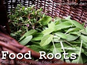 www.nourishingdays.com
