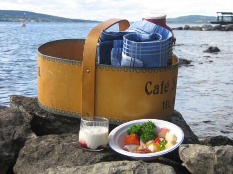 Picknick vid Storsjön