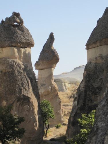 Mössorna på stenstoderna är av Basalt, en hård vulkanisk bergart