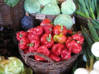 Grönsaker från Ås Trädgård