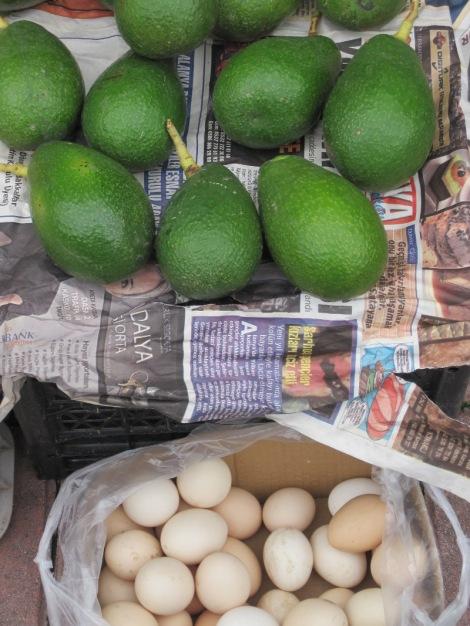 Avocado och ägg