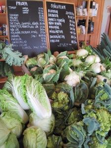 Ekologiska grönsaker från Ås Trädgård