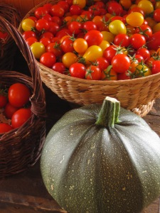 Tomater från Ås Trädgård