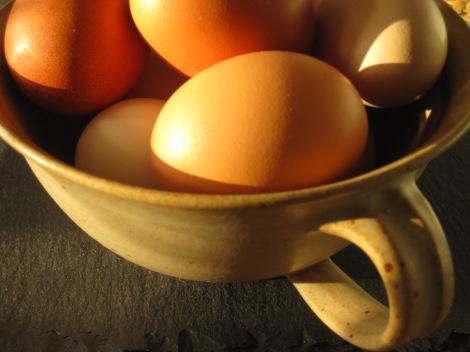 Ägg från Gallina Ovum