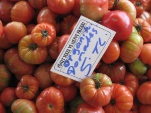 Ekologiska tomater i Alanya