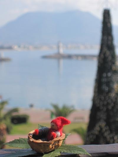 Tomten är nere i hamnen och har tagit en titt på julgranen, den är rest inför julmarknaden i morgon...