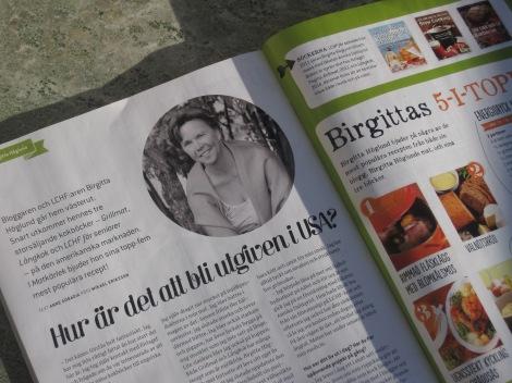 Artikel om mig och mina kokböcker i Matkärlek