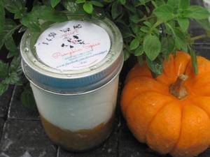 Pumpkin Spice Yoghurt som lördagsgodis...
