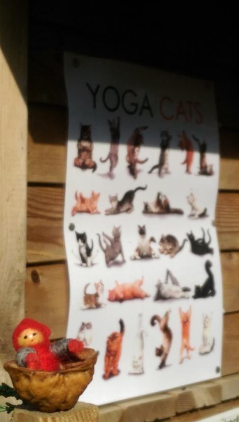 Tomten gillar yoga