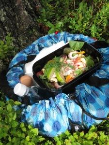 Wonderbag på picknick