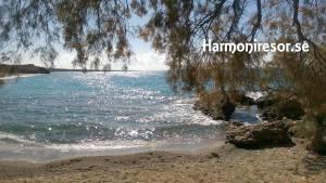 Harmoniresor.se