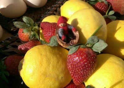 Tomten gillar naturmediciner från grönsaksmarknaden...