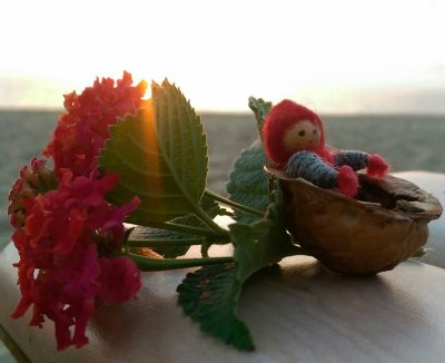 Tomten är förtjust i Alanyas blomsterprakt, jag med...